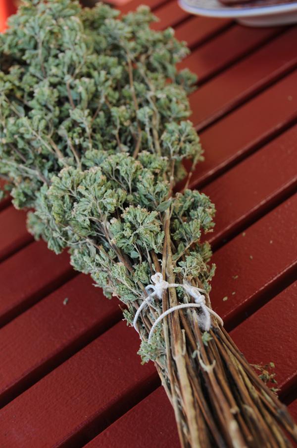 Redd urtene før frosten kommer
